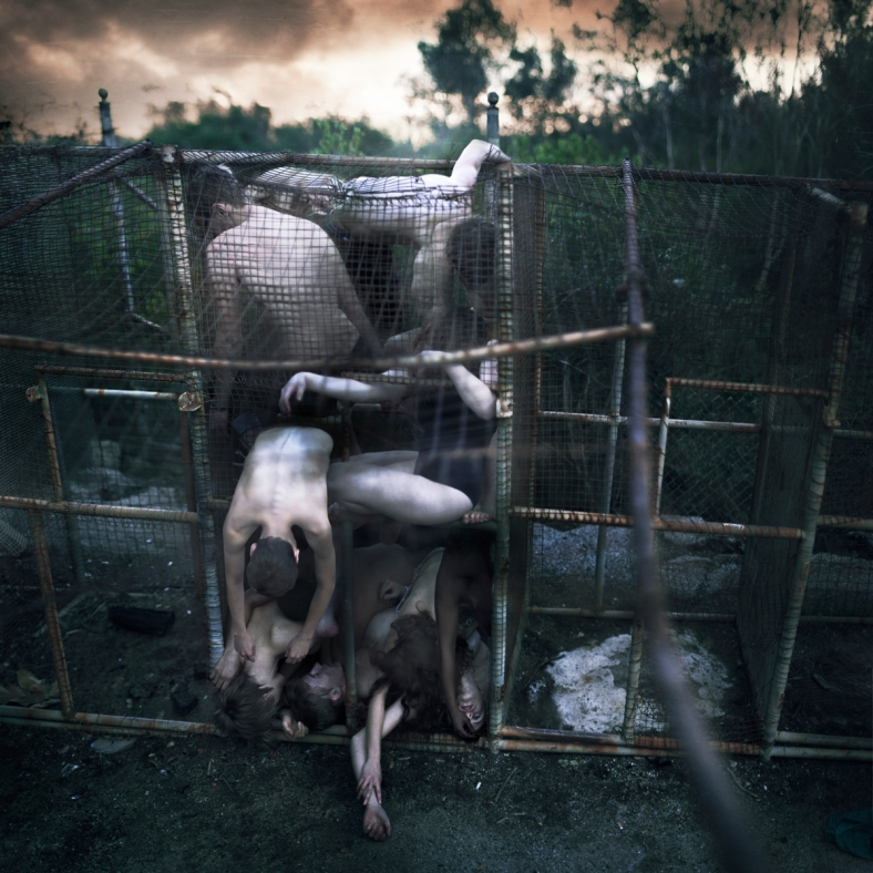 "Copyright 2013 – Rob Woodcox - ""Kept In Cages"""