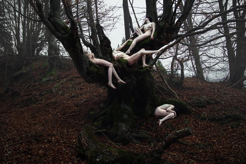 """""""Rituals - Dryads"""" - Copyright 2014 Elena Helfrecht"""